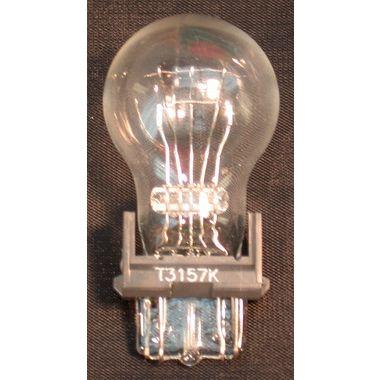 bulb_tail_3157l.jpg